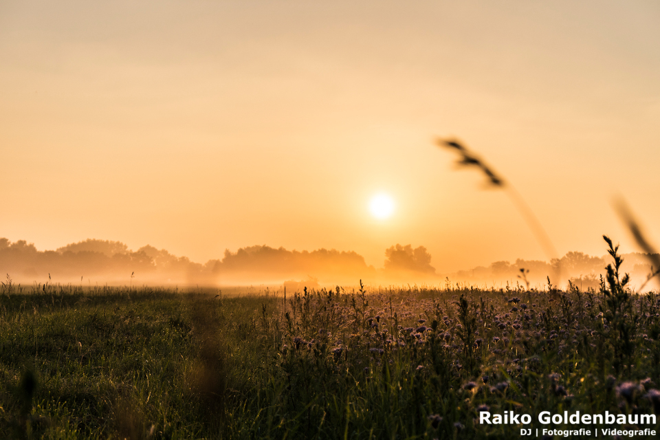 Sonnenaufgang bei Braunschweig